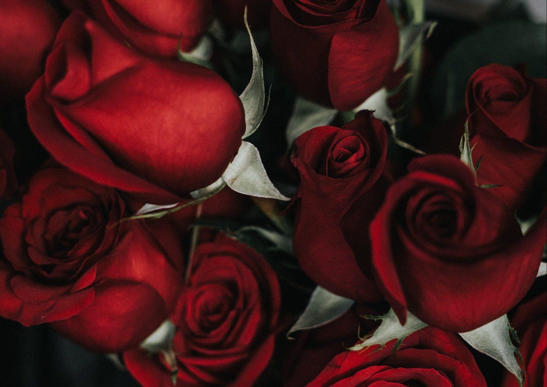 The Girl & The Blog: Liebe dich selbst, dann können dich alle anderen gern haben.