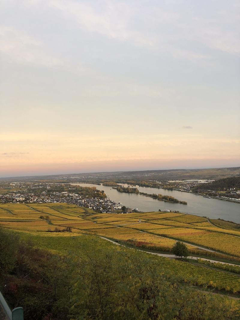 Blick-auf-den-Sonnenuntergang-in-Rüdesheim-am-Rheinsteig